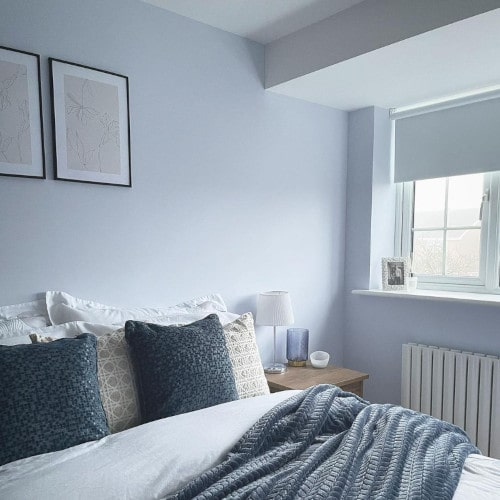 Фото цвета Dulux 29BB 75/065 Blueberry White