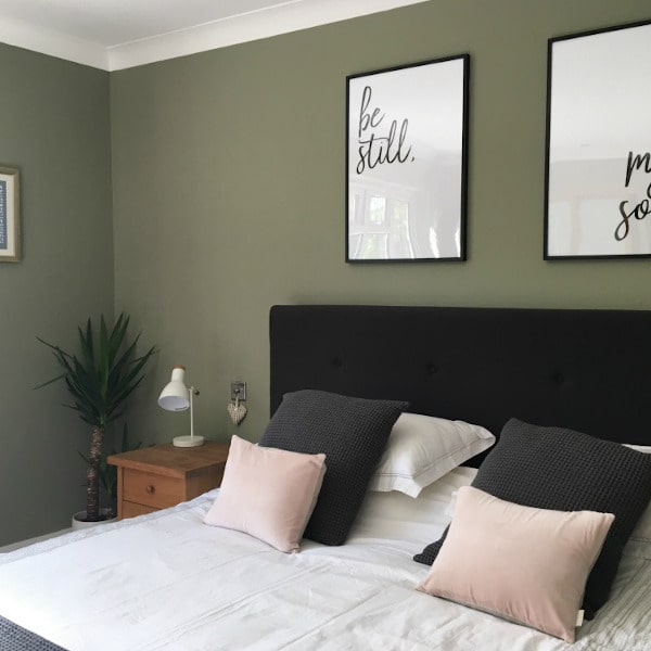 Фото цвета Dulux Overtly Olive null